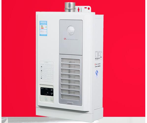 美国Rheem瑞美天然气燃气热水器 智能恒温多重防护  LX